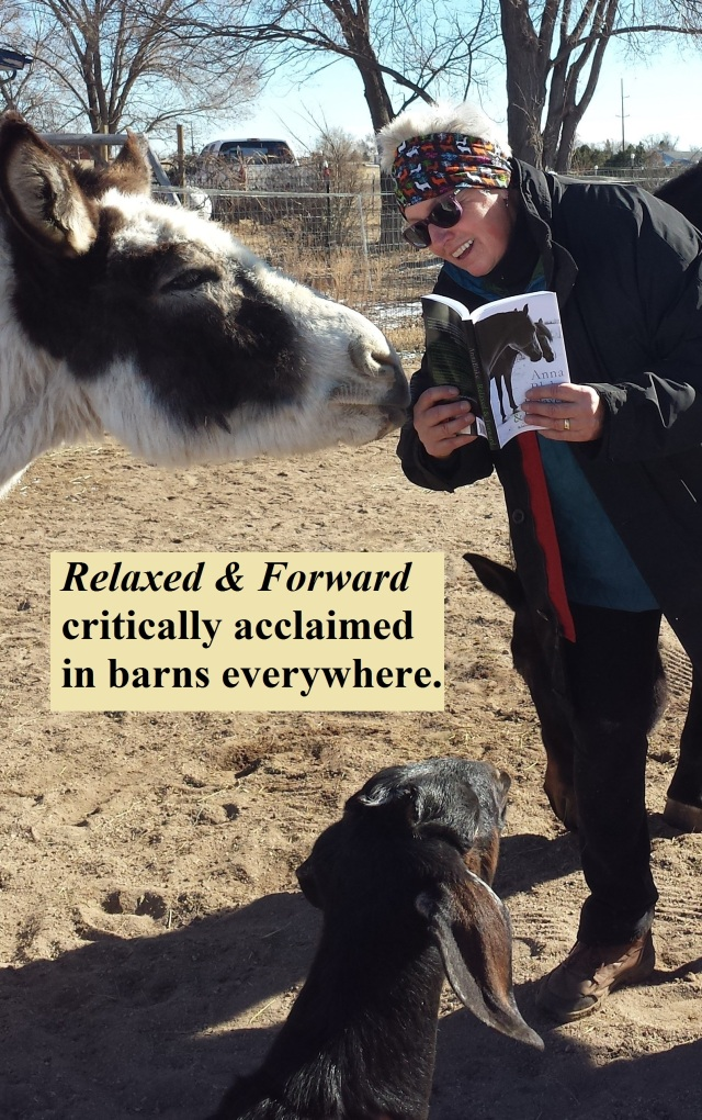 Donkey Skills for the Recovering Introvert